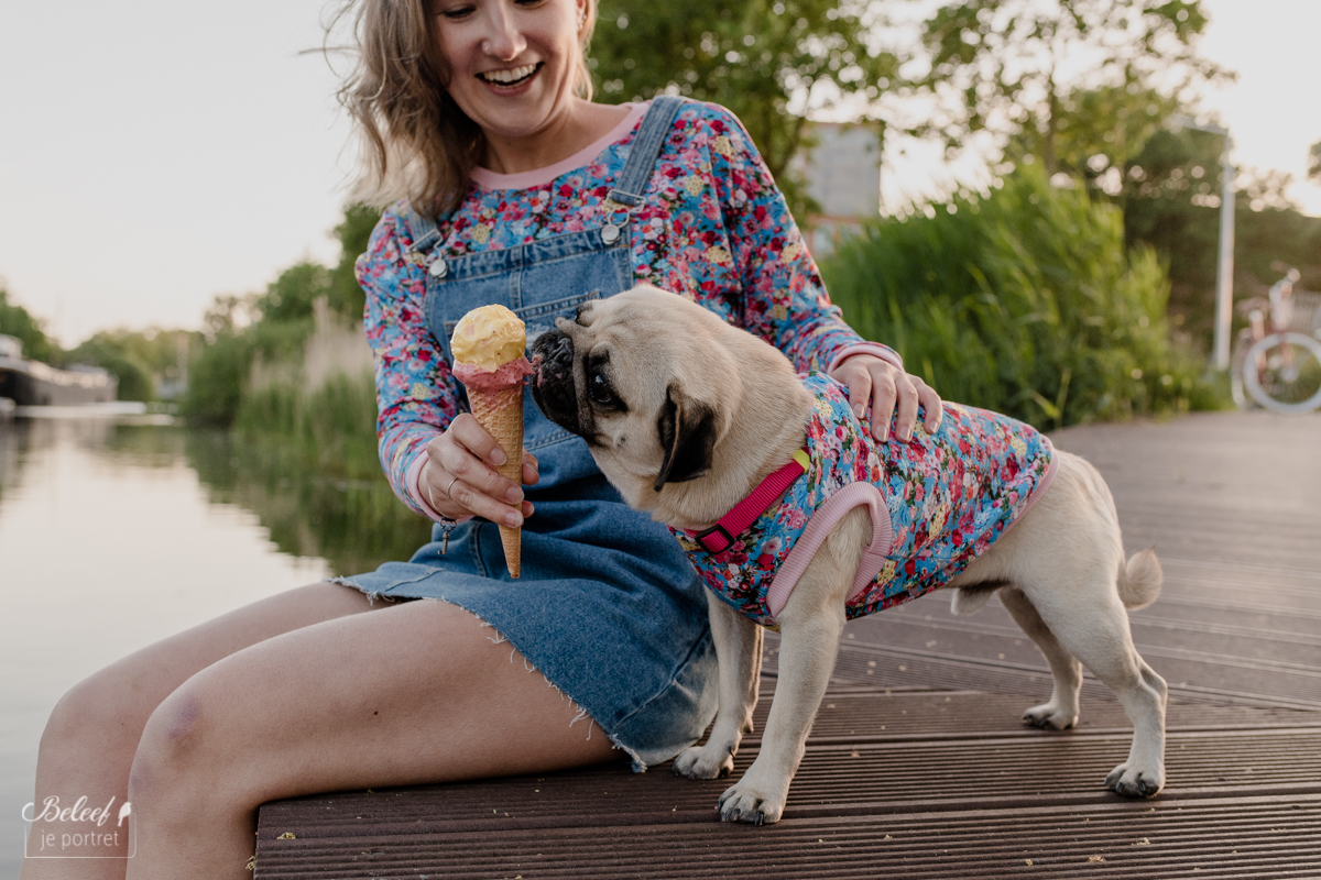 Pug Lovers: Fashionshoot Bandito Pups